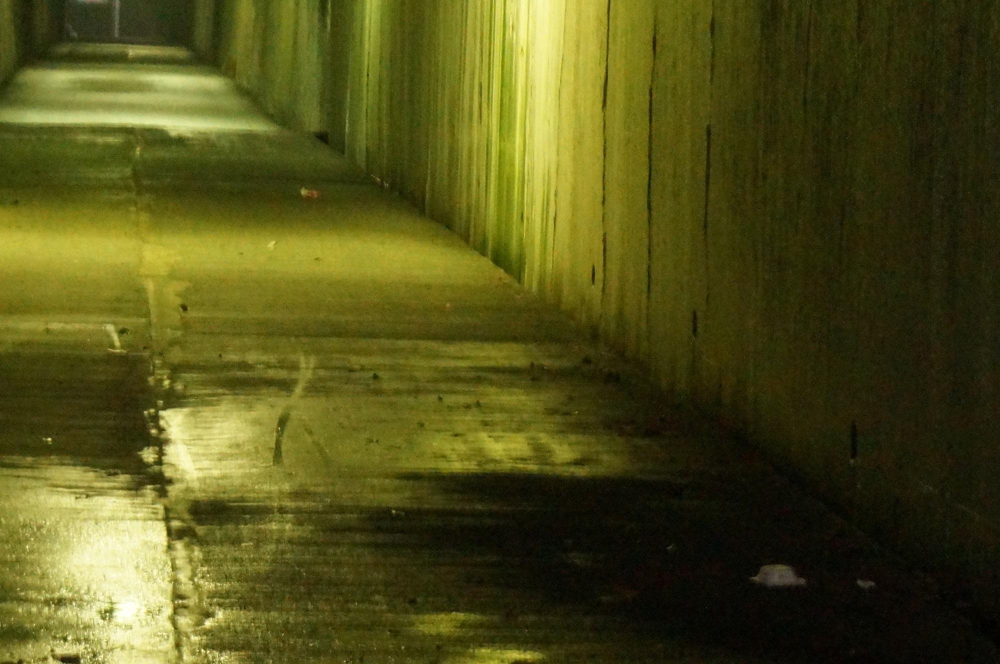 心霊スポット・花山洞(旧東山トンネル)