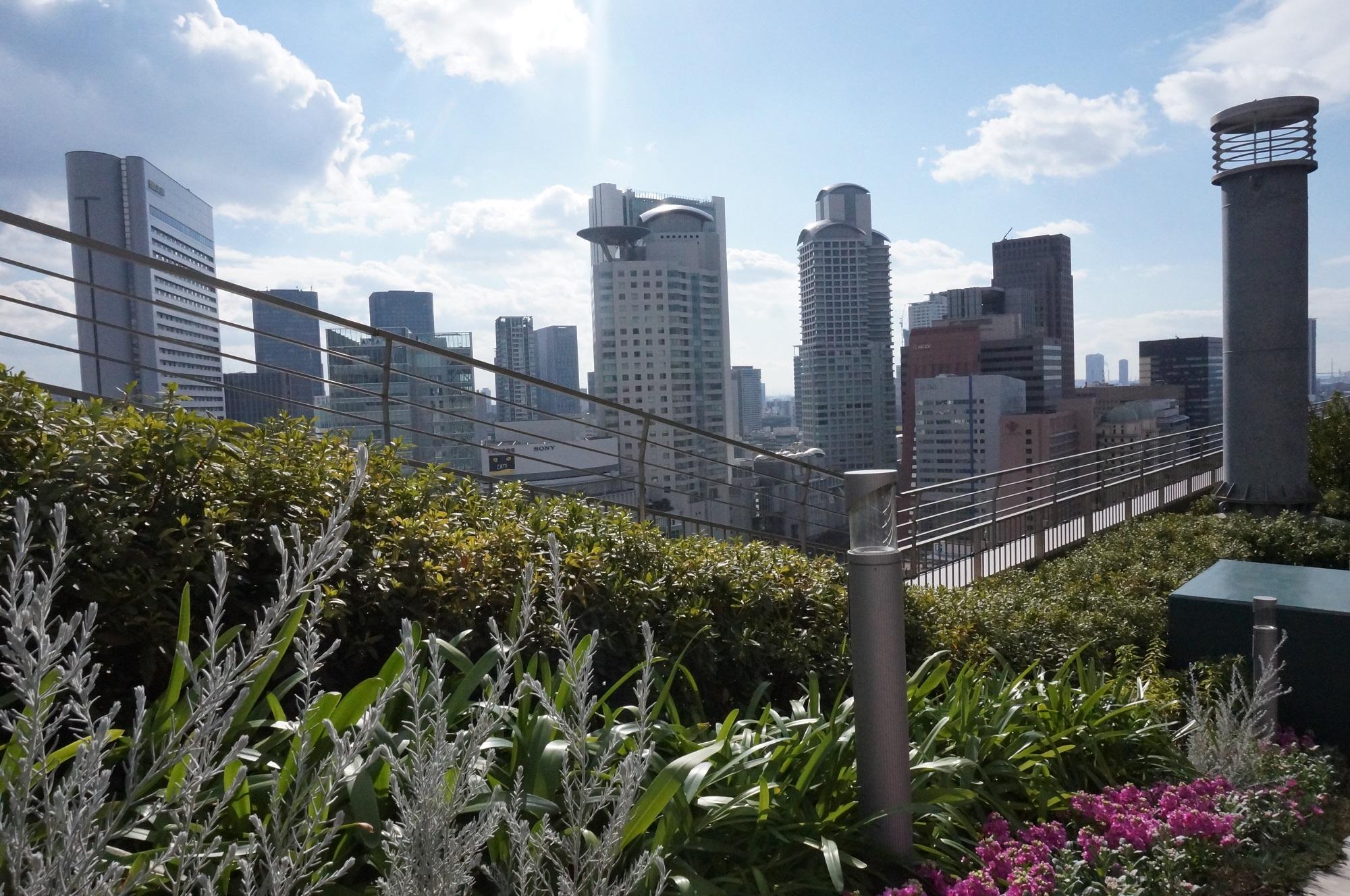 梅田の高層ビルに囲まれた天空の農園